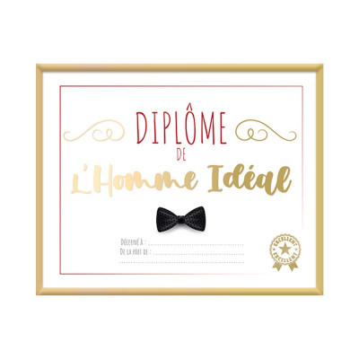 CADRE DIPLOME HOMME IDEAL