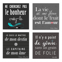 TOILE CITATIONS  4MOD
