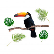 STICKER GM TOUCAN