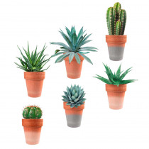 STICKER POTS PLANTES