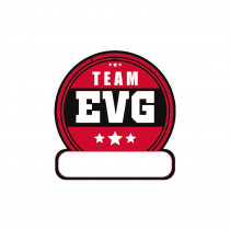 PACK 12 SICKERS TEXTILE EVG